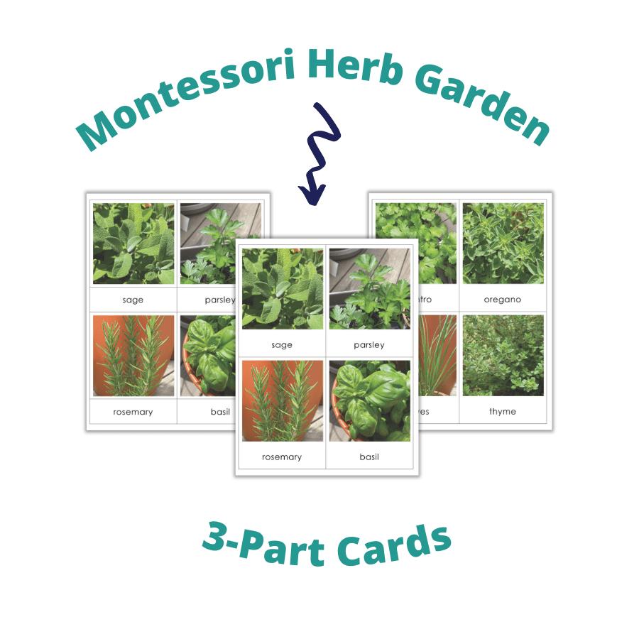 Tarjetas Montessori De 3 Partes, Currículo De Idioma Montessori, Jardinería, Jardín De Hierbas, Actividades Preescolares, Actividades Para Niños, Imprimible Gratis, Educación En El Hogar