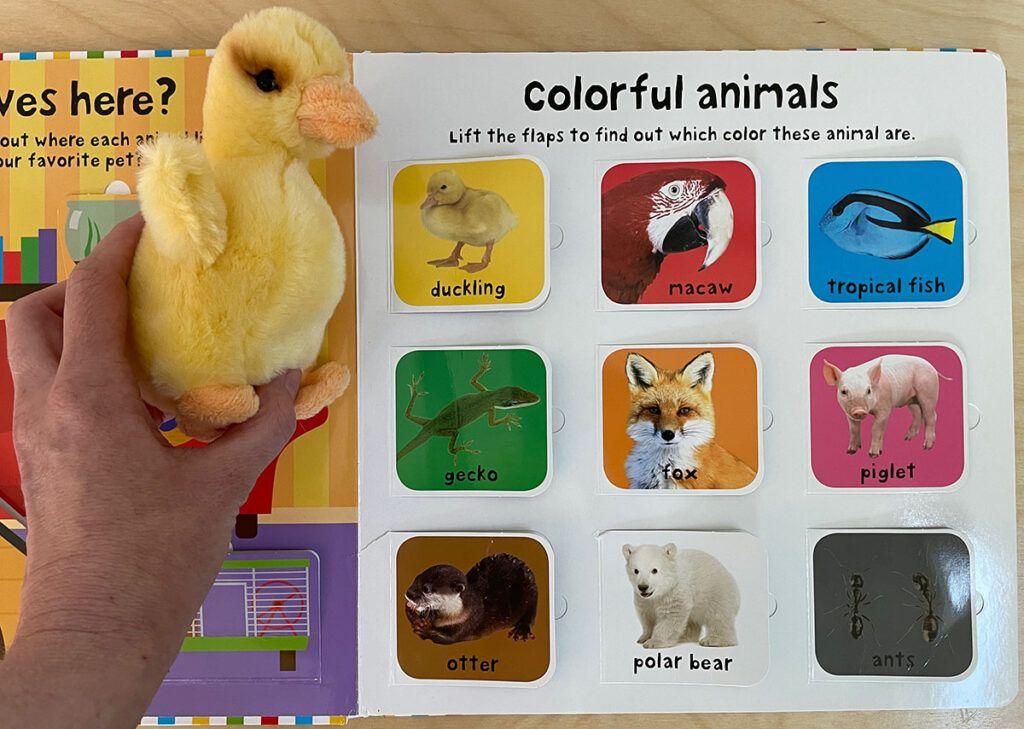 Currículo de lenguaje Montessori, lenguaje oral, correspondencia de objetos e imágenes, niños de 2 años, niños de 3 años, niños pequeños, niños en edad preescolar