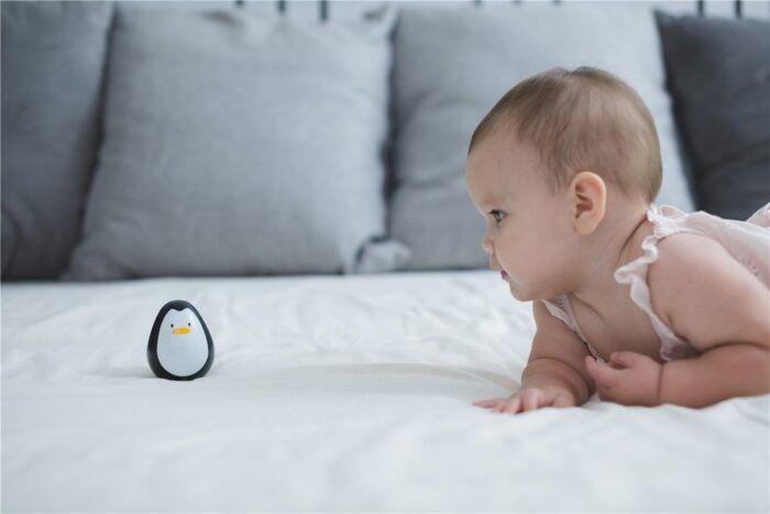 Pingüino tentetieso 2