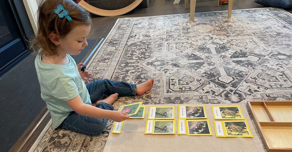 vocabulario para preescolares, tipos de abejas, tarjetas de 3 partes, montessori, currículo de idiomas, actividades, niños pequeños, mapas mentales, jardinería y naturaleza