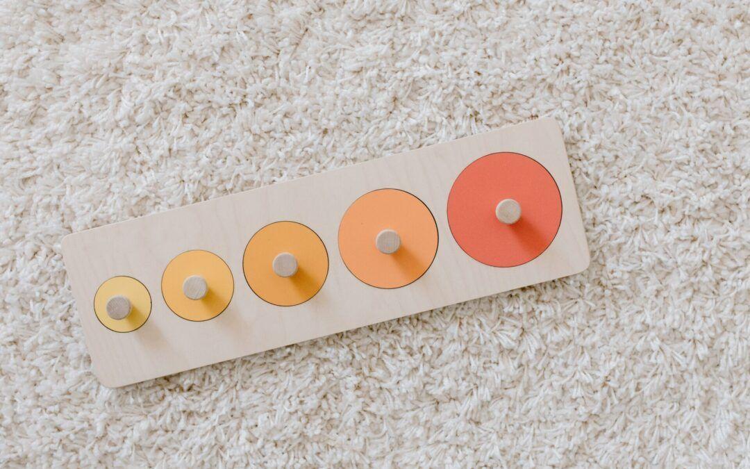 image of Montessori knobbed puzzle.