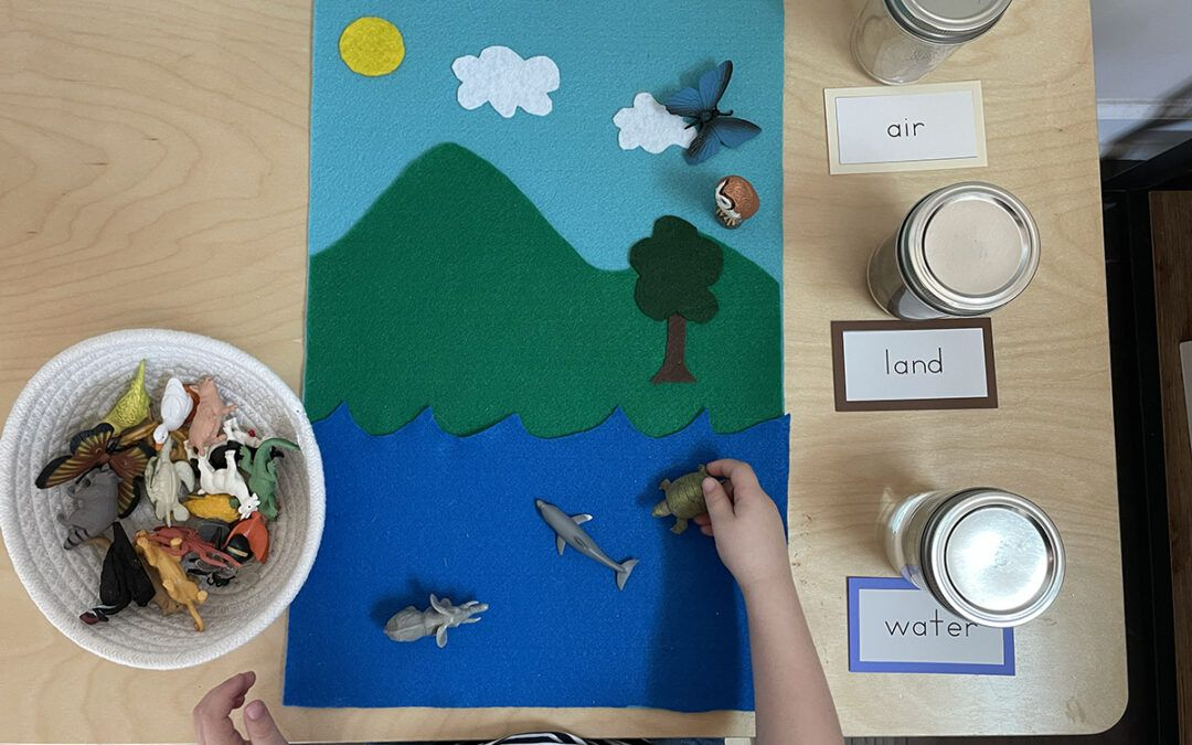 Montessori Geography, land air and water mat