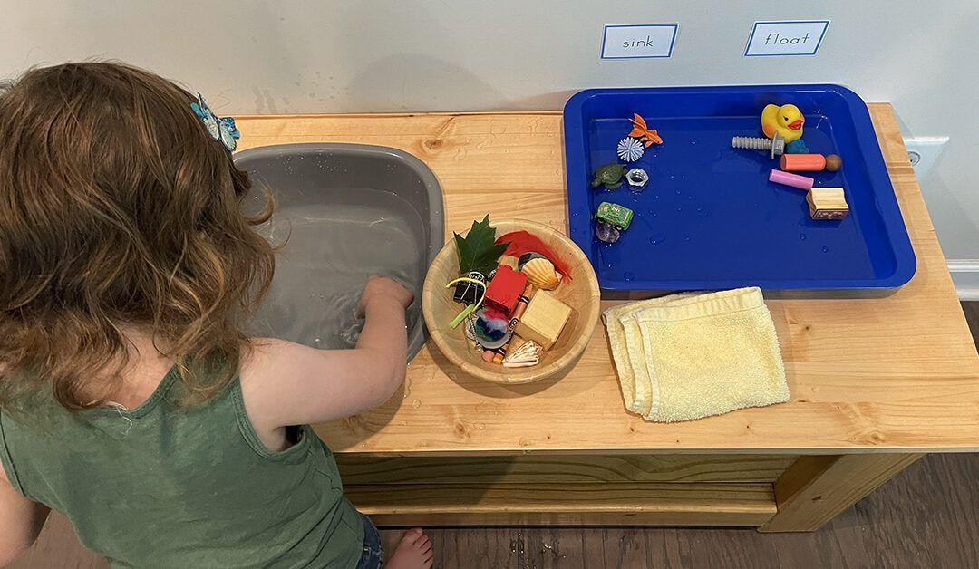 sink and float activity, Montessori, preschooler, science experiment, homeschooling